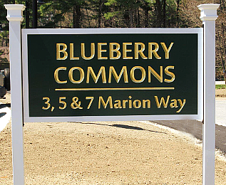 Blueberry Commons