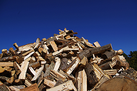 OceanView Donates Wood to Cumberland Wood Bank
