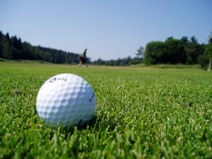 Golf FORE Life and Senior Fitness Webinar